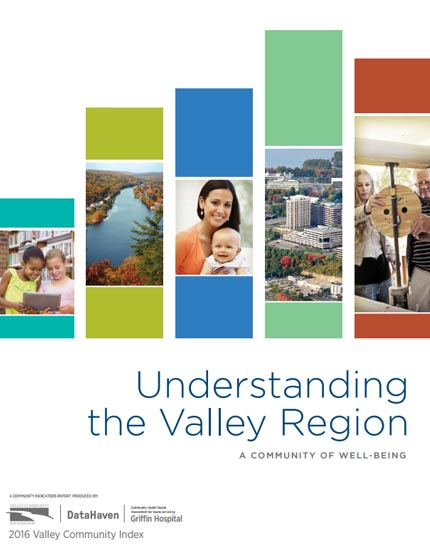 Valley Community Index 2016 cover image